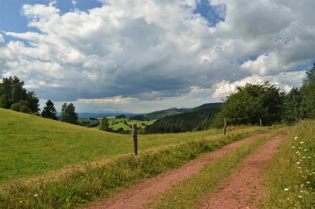 Javoří hory - z Hynčic přes Šonov a Božanov do Machova